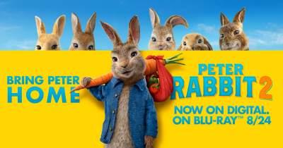 Peter Rabbit 2: The Runaway 2021 Hindi Dual Audio Full Movies 480p