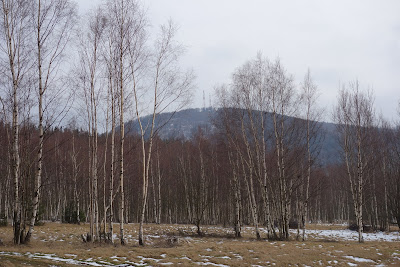 widok na Chełmiec