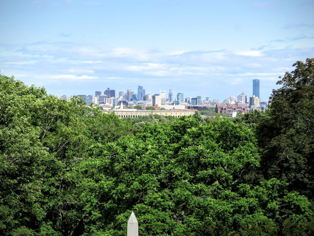 Views of Boston from the Observation Tower at Mount Auburn Cemetery in Cambridge