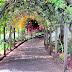 Quinta Vigia gardens datail