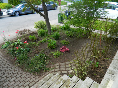 Toronto Wychwood Front Yard Spring Cleanup After by Paul Jung Gardening Services--a Toronto Gardening Services Company