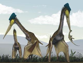 Giant Pterosaur Feeding