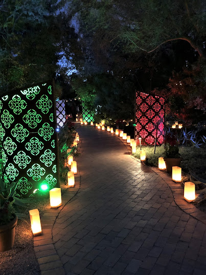 light - Tucson Botanical Gardens Luminaria Night 2019