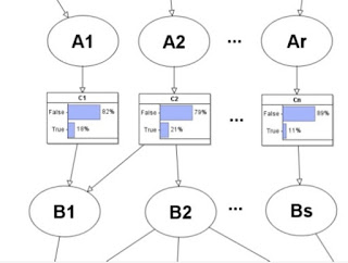 Probability and Risk: The Bayesian Networks mutual