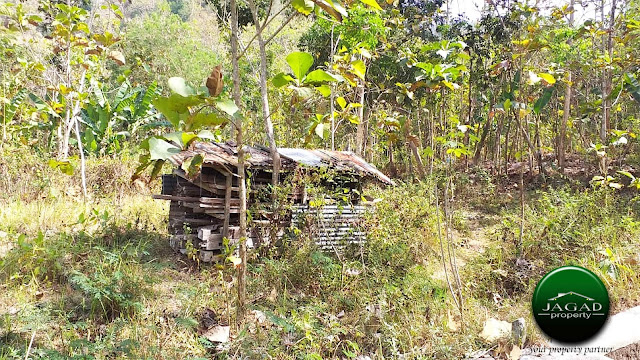 Tanah Dijual di Girimulyo, Kulon Progo
