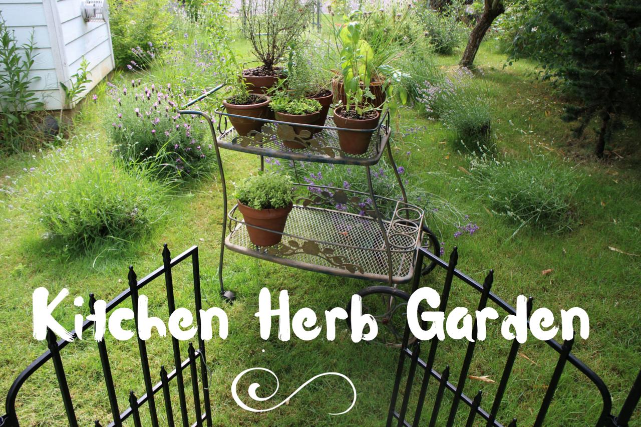 Kitchen Herb Garden 2016  Blog to Taste