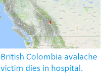 https://sciencythoughts.blogspot.com/2018/02/british-colombia-avalache-victim-dies.html