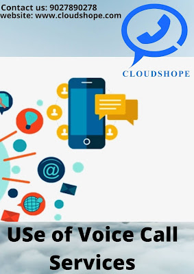 Use of Voice Call Services