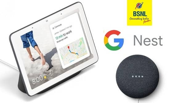 Google Nest Mini and Google Nest Hub Smart devices