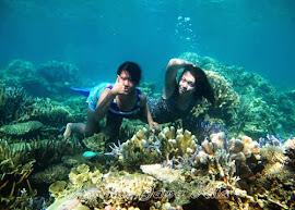 snorkeling pulau cemara besar karimun jawa