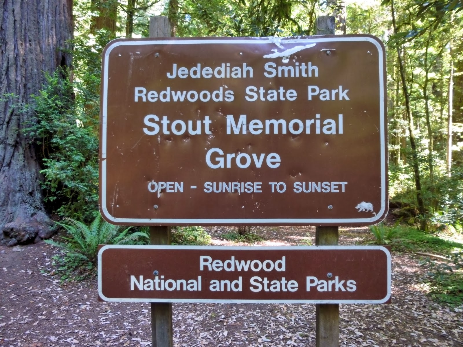 American Travel Journal Myrtle Beach Smith River National Wild And - Stout memorial grove redwood national and state parks