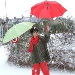 10 februari. Parapludag