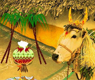 Best Greeting Cards Of Pongal 2017
