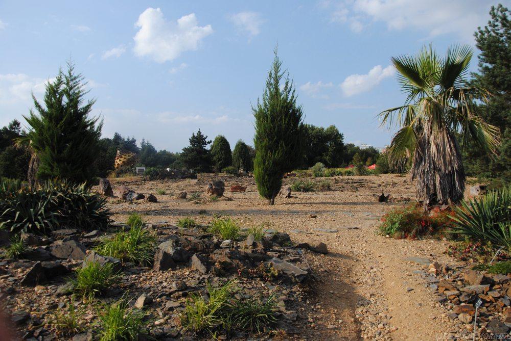 Winobranie i Ogród Botaniczny w Troi - pomysł na Pragę.