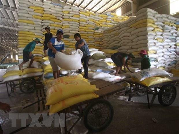 Chuẩn bị nguồn hàng gạo xuất khẩu tại Công ty Lương thực sông Hậu (Tổng công ty Lương thực miền Nam). (Ảnh: Vũ Sinh/TTXVN)
