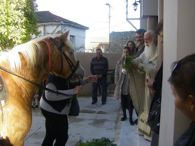 Άλογα και αναβάτες ευλόγησαν στο Κρανίδι