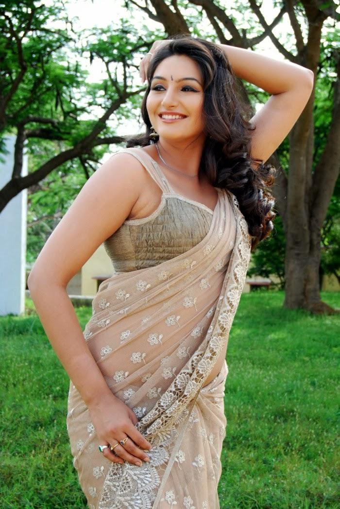 Sexy Indian Women In Saree Hq Photos Ragini Dwivedi Hot -6508