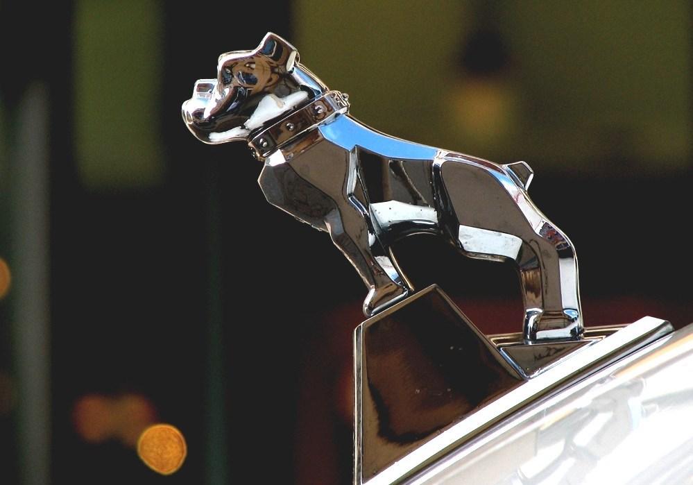 Mack Trucks - Mack Dog