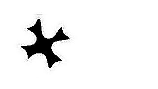 13 -Trevo TR e branco 9 png