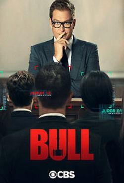 Bull - Poster