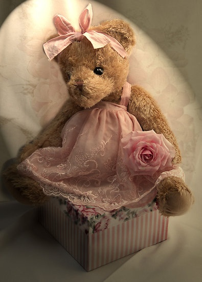 Lady Anne S Cottage Charming Teddy Bears