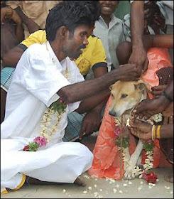 Selva Kumar dan Seekor Anjing - Sekitar Dunia Unik