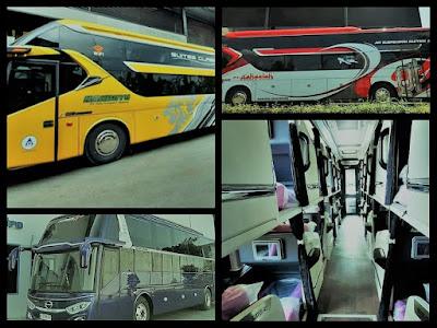 Daftar PO Bus Layanan Suites Class Area Jawa