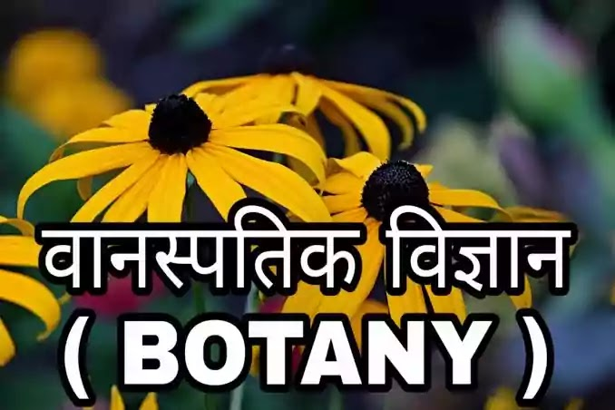 वनस्पति विज्ञान किसे कहते है अर्थ व परिभाषा एवं वनस्पति विज्ञान की शाखाएं, botany in hindi, botany meaning in hindi, botany kya hai, बॉटनी इन हिंदी,