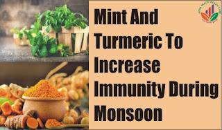 Mint And Turmeric To Increase Immunity During Monsoon