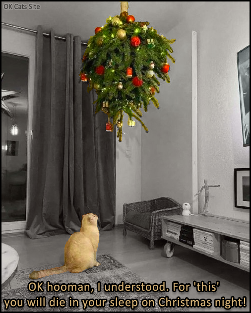 Photoshopped Cat pictures • Poor cat is confused because the Xmas tree is hanging from the ceiling upside down  [ok-cats-site.com]