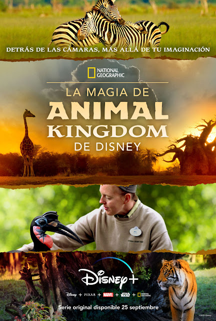 Cartel La magia de Animal Kingdom de Disney