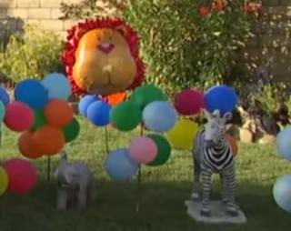 Motoparty, Dschungel mit Luftballons dekoriert.