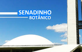 images - A comunidade do Jardim Botânico e Jardins Mangueiral já sabe quem é o candidato a Administrador da nossa região conhece bem as necessidades da região e quer; Hamilton Santos como futuro Administrador Regional do JB.