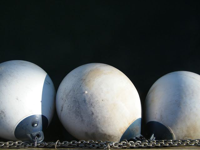 white buoys lined up in a spanish harbour