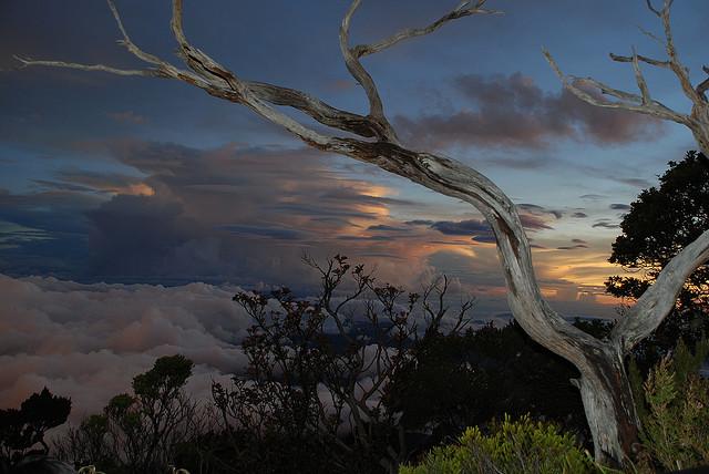 Menikmati Indahnya Gunung Kinabalu Sabah Malaysia