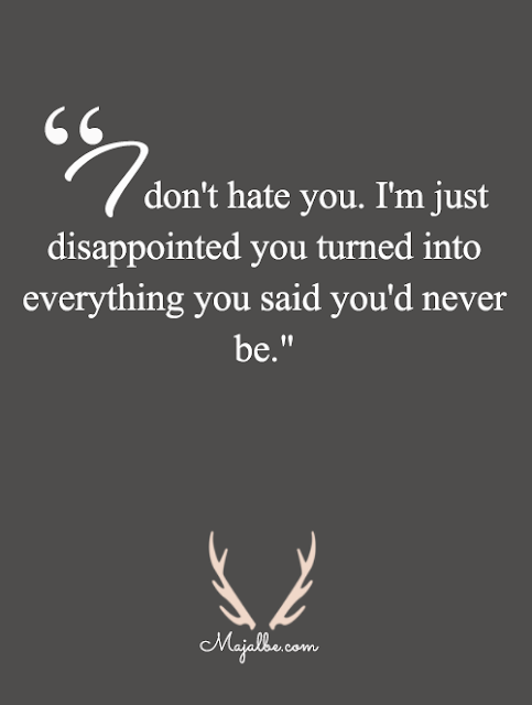I Dont Hate You Love Quotes