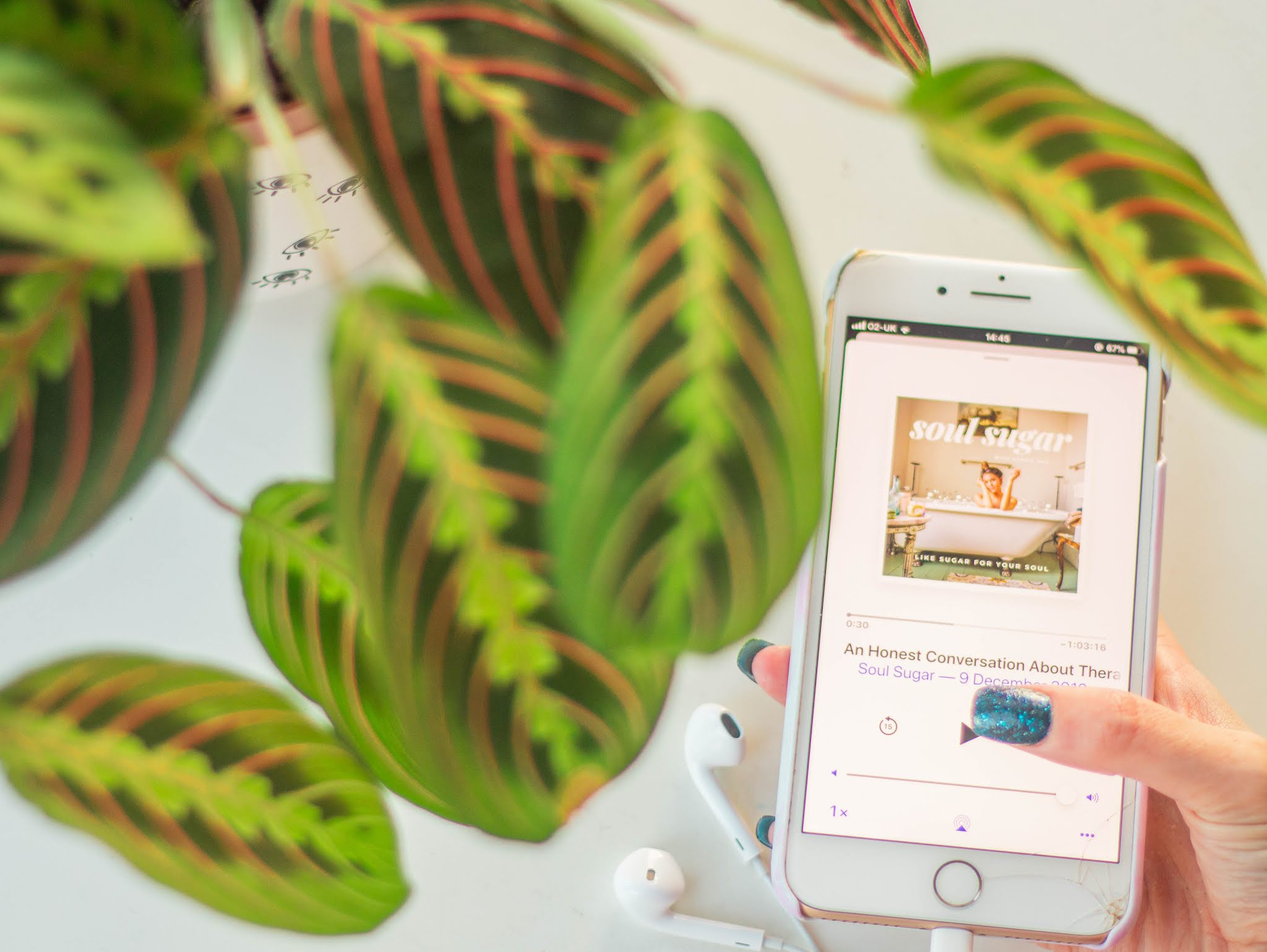 iphone showing top 2019 podcast - soul sugar by carrie rad - with plant - self care - intentional living