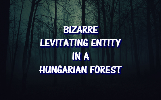 Bizarre Levitating Entity in a Hungarian Forest