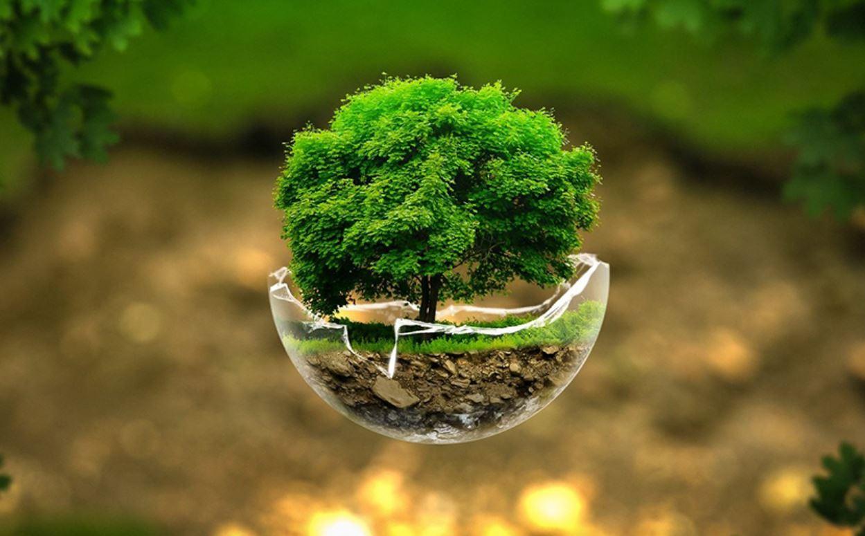 """المملكة العربية السعودية تدشن أسبوع البيئة تحت شعار """"البيئة لنا ولأجيالنا"""""""