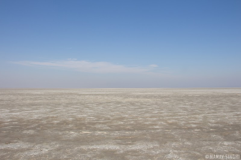 Sambhar Lake Dry Salty Lake bed.