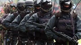 Kopassus Tersingkir dari Daftar Pasukan Khusus Terbaik di Dunia, Inilah Kehebatan LRR Filipina