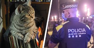 """La policía entró a una casa pensando que había una fiesta ilegal, pero se encontró con """"Dj Gato"""""""