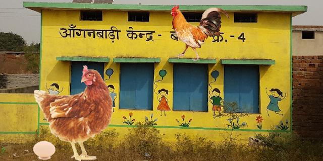 मध्य प्रदेश में आंगनबाड़ी कार्यकर्ता अब मुर्गियां पालेंगी, बच्चों को देसी व ताजे अंडे दिए जाएंगे | MP NEWS