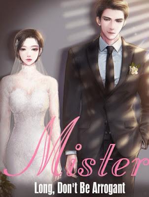 Novel Mister Long, Don't Be Arrogant Karya Lisa Mei Full Episode