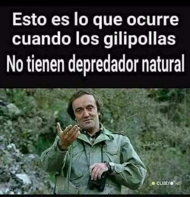 Félix Rodríguez de la Fuente, gilipollas, depredador natural