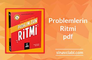 Arı Yayınları Problemlerin Ritmi pdf