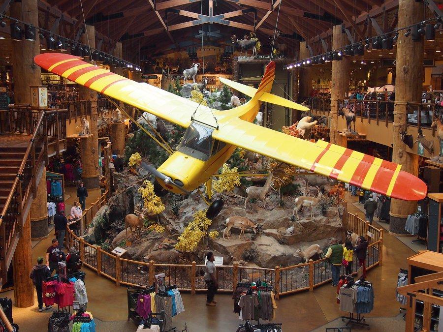 Otis Odd Things I Ve Seen The Inside Out Museum Cabela