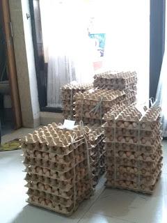 Telur Ayam 30btr