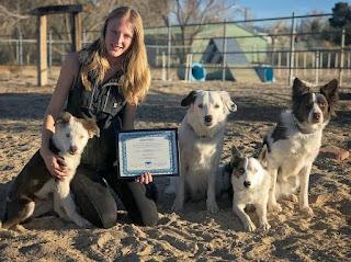 Dog Trainer of the Year Sara Carson