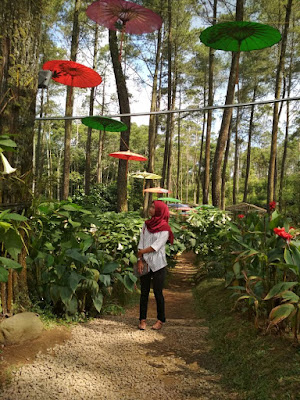 orchid forest lembang